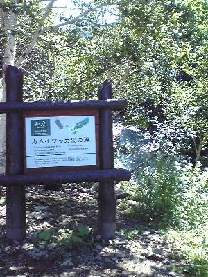 カムイワッカ湯の滝入口